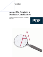 spdf_Intangible Assets Guide May 2008 copy