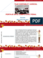 PPT Peritaje en el campo civil.pptx
