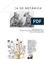 inflorescencias y frutos.pptx