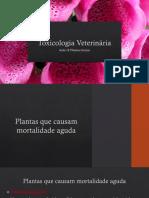 08062018082628Aula 12 Plantas tóxicas.pdf