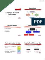 Microbiologia_Aula 3_Fisiologia da célula bacteriana (2)