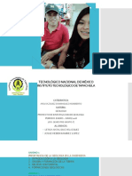 PROYECTO FINAL DE GEOLOGIA.pptx