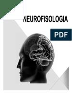 GUIA- NEUROFISOLOGIA.pdf