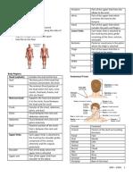 PHA618 - Anatomical Terms