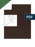 diagram P-T.docx