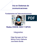 Maestria_en_Sistemas_de_Telecomunicacion.pdf