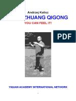 Zhan Zhuang Qigong. You can feel it!