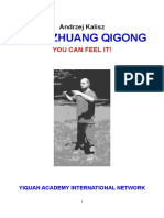 Zhan Zhuang Qigong. You can feel it!