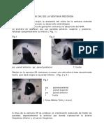 Anatomia de la Coclea