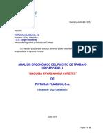 Estudio Ergonomico Puesto Trabajo Maquina Envasadora de Cuñetes Pinturas Flamuko C A   junio 2015
