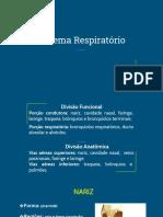 AULA SISTEMA RESPIRATÓRIO.pdf