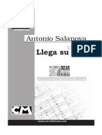 LLega-su-voz-SAA.pdf