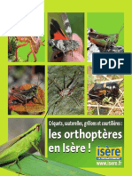 Plaquette Orthoptères Isère