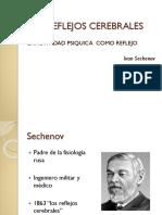 sechenov LOS REFLEJOS CEREBRALES