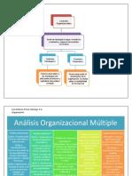 Mapa Conceptual Organización