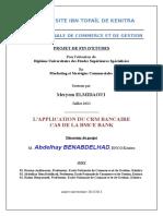 267037909-Pfe-Final-Meryem.pdf