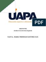 TAREA 5ESTUDIO LITETATURA ESPAÑOLA (2)