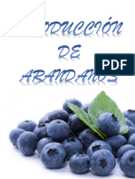 PROYECTO DE ARANDANOS