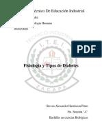 Anatomia trabajo de tipos de diabetes.docx