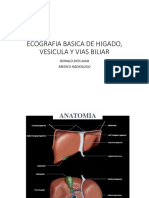 CLASE BASICO HIGADO VESICULA VIAS BILIARES.pptx