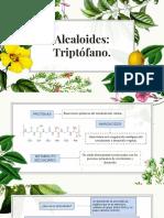 Alcaloides .pptx.pdf