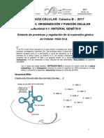 UNIDAD Nº 4.1- MATERIAL GENETICO II