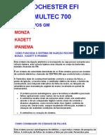 EFI Multec 700 - 1.doc