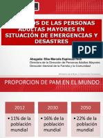 14.DERECHOS DE LAS PAM EN EMERGENCIAS Y DESASTRES