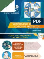 Proyecto Ing2 MML Bladimiro Cusba