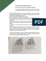 FACILITACION BASADA EN PRINCIPIOS DE NDT