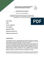 c381rea-social-2020-1 (1).docx