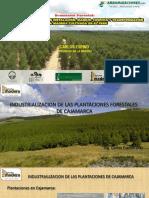 4.Carlos Espino.pdf