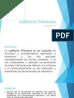 Auditoria Tributaria Definicion Normas Etapas