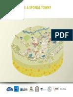 sponge town guideline