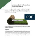 Manual de mantenimiento de césped en campos de fútbol