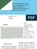 Investigación antiprotozoaria