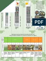 282784113-Etapas-de-Desarrollo-y-Fases-Fenologicas-Del-Frijol.pdf