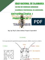 PRÁCTICA N° 2.pdf