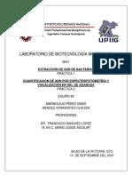 Extraccion_de_ADN_de_Escherichia_coli.docx