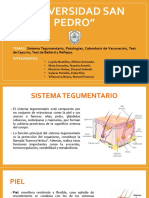 Sistema Tegumentario, Patologías, Calendario de Vacunación, Test de Capurro, Test de Ballard y Reflejos.