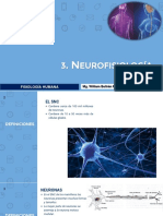 3. NEUROFISIOLOGÍA