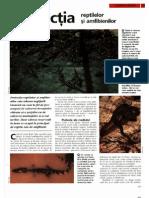 Arborele Lumii - Animale - Protectia Reptilelor Si Amfibienilor