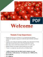 Tomato Madanapalle PPT