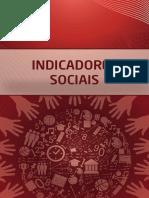 Indicadores sociais - Helenara R. Sampaio.pdf