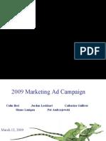 27214809 2009 Marketing Ad Campaign