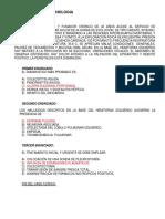 ERIKA MAYTE SANDOVAL ABREU CASO CLINICO ENDOCRINOLOGIA