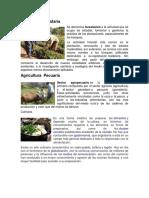 Agricultura forestaría