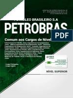 petrobras_-_comum_superior
