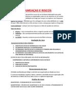 ESTUDAR RESUMO 27001.pdf