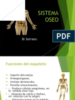 tema 2 - sistema esqueletico.